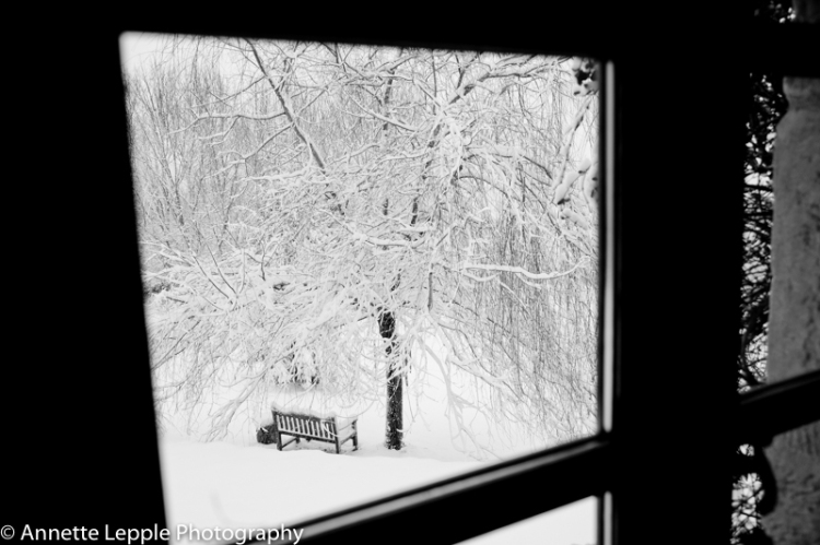 View through window onto garden bench and weeping willow in the snow