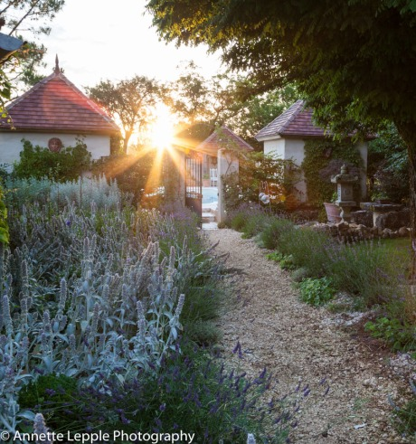 Gravel path lined with lavender and stachys leading to walled swimming pool and pavilions
